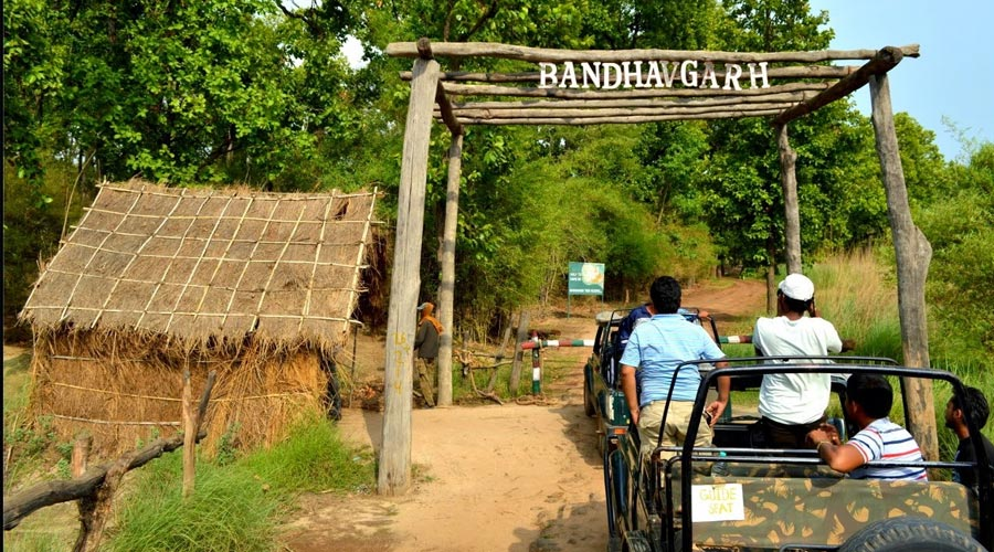 bandhavgarh1